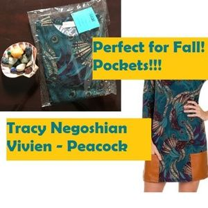 Teal & Cream Dress - Beautiful for Fall! - XS